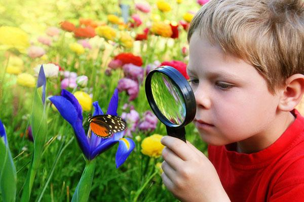изучение природы