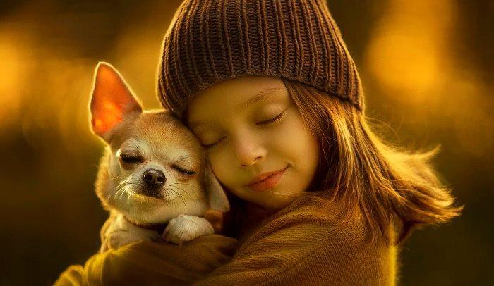 Сострадание к животным