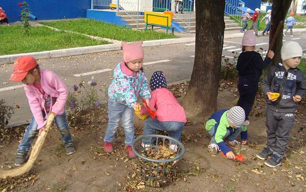 трудовое воспитание с детском саду