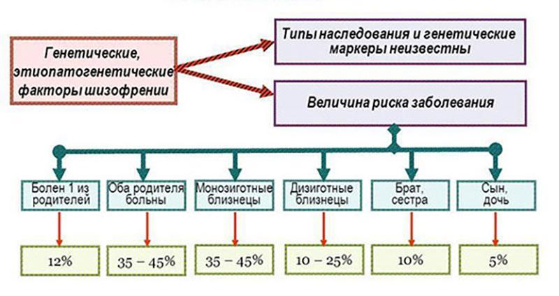 схема передачи шизофрении по наследству
