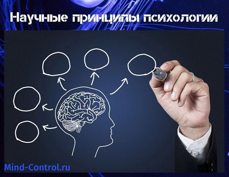 принципы психологии