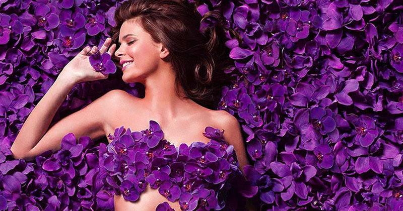 фиолетовый цвет в психологии женщин