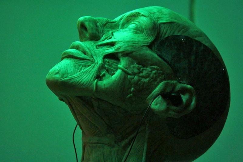 что означает зеленый цвет в психологии человека