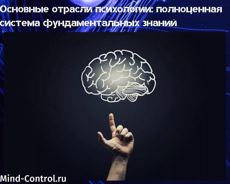 основные отрасли психологии