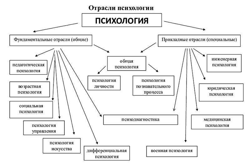 схема отраслей психологии